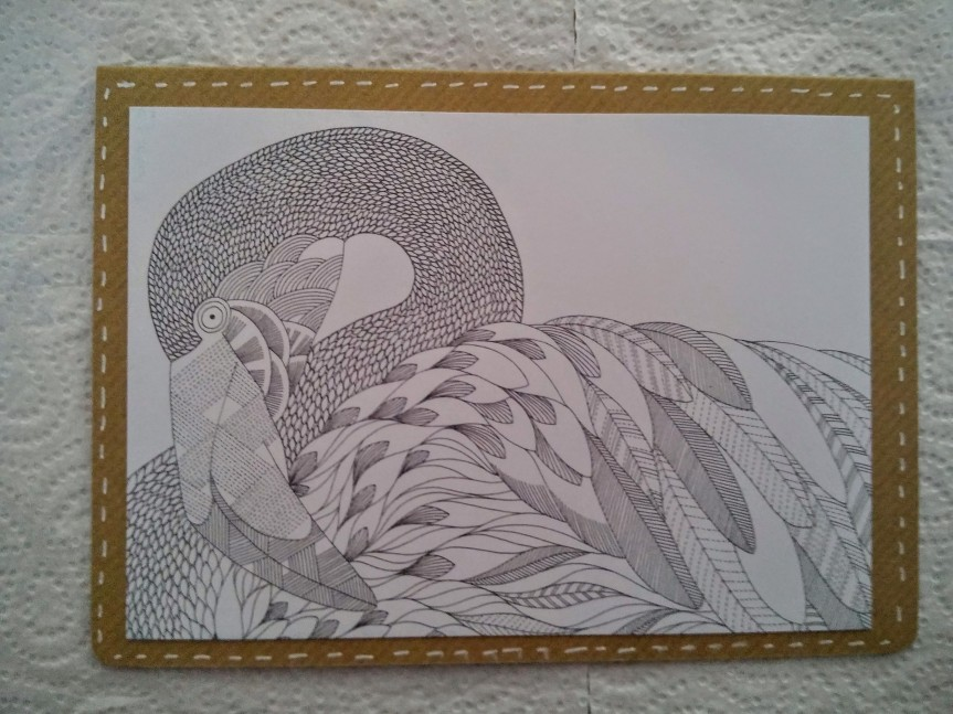 Animal Kingdom : Colouring Card Set