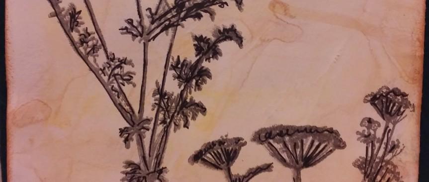 Card: Artemis flowers